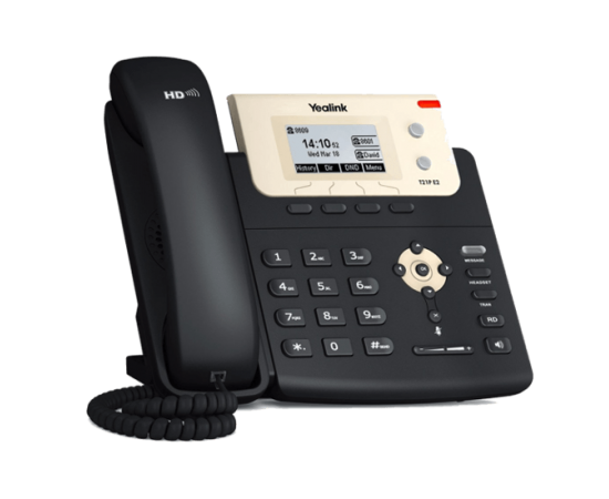 T21P-E2 - Basic Business IP Phone front left view